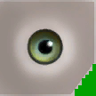 File:0xD1659CCE910B3822 bluegreen eyes.png