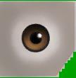 File:0xD043A3E997F88588 lt brown eyes copy.png