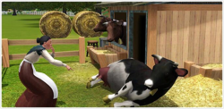 TS3 Cow and Sim