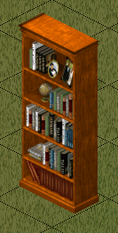 File:Ts1 amishim bookcase.png