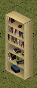 File:Ts1 cheap pine bookcase.png
