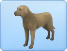 File:Breed-l22.png