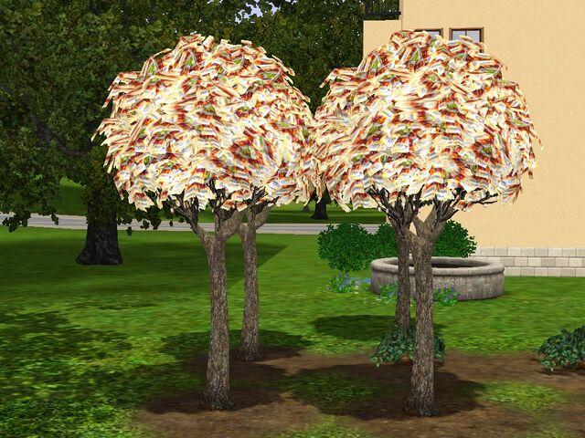 File:Money-tree-ts3.jpg