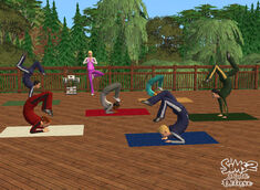 TS2 Yoga