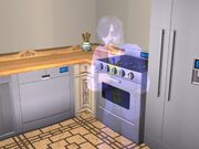 Ghost in the kitchen
