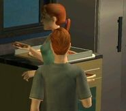 Sims 2 Ponytail