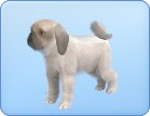 File:Breed-s26.png