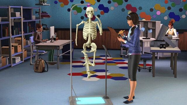 File:Sim skeleton.jpg