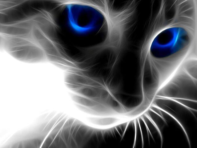 File:Spell-Caster's Second Avatar.jpg