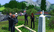 Thesims3-134-1-