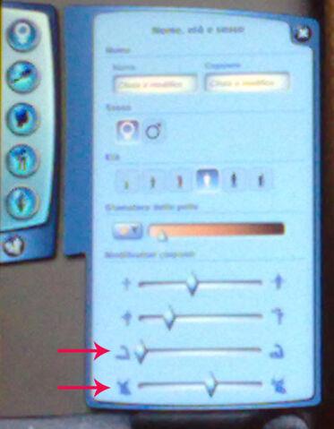File:Ln musclesbreast bars.jpg