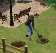 Sim digging for treasure Bon Voyage
