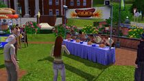 Festival summer - hot dog eating contest