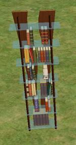 Ts2 double-helix designer bookshelf