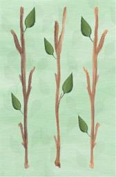 File:Painting medium 4-3.png