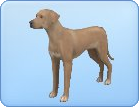 File:Breed-l63.png