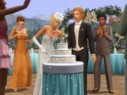 Generations wedding