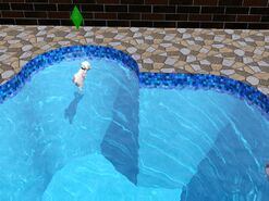 Fresno swim