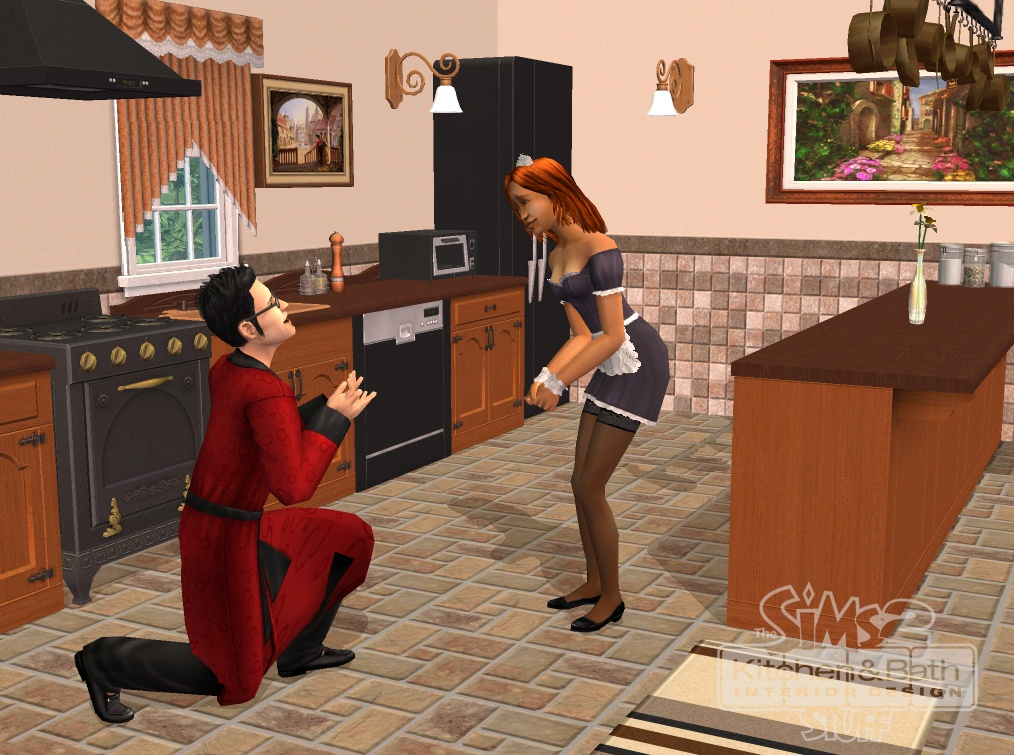 The Sims 2 Kitchen Bath Interior Design Stuff The Sims Wiki