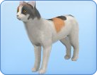 File:Breed24.png
