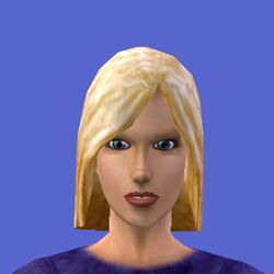 Chris Roomies (The Sims console)