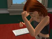 Sims 2 buyable homework