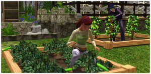 Mill set harvestables