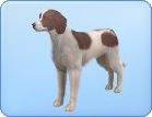 File:Breed-l43.png