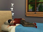 Amalia taking a Nap