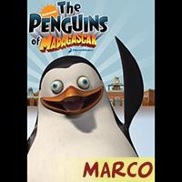 File:Q1-A1 penguins marco.jpg