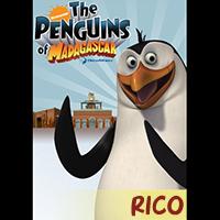 File:Q1-A3 penguins rico.jpg