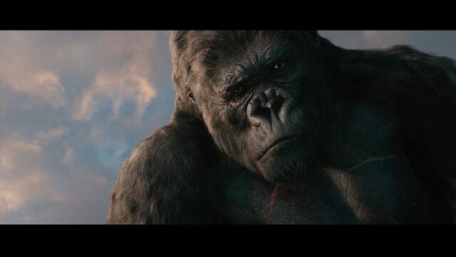 File:Kong weakened.jpg