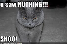 File:U SAW NOTHING.jpg