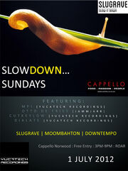 Slowdownsunday Johannesburg