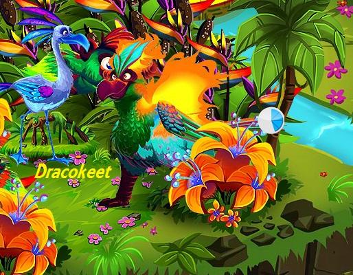 File:Dragokeet.jpg