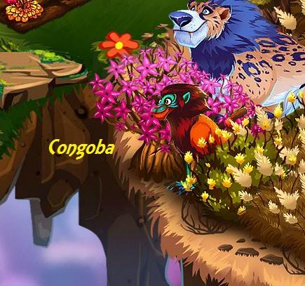 File:Congoba.jpg