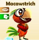 File:Macawstrich.jpg