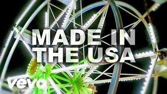 Demi Lovato - Made In The USA (Lyric Video)