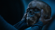 202Skull