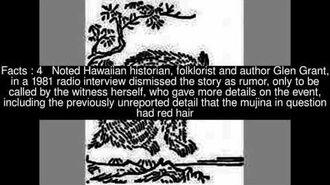 Sightings in Hawaii of Mujina Top 5 Facts.mp4