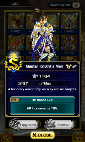 File:Master Knights Mail.png