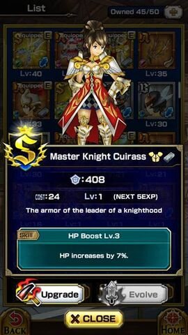File:Master Knight Cuirass F.jpg