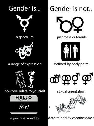 File:Gender.jpg