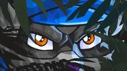 Sly Cooper's eyes