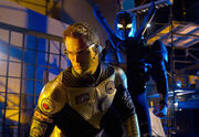 Booster and Beetle