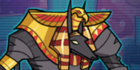 Raider Anubis