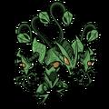 Hydra Poison 3