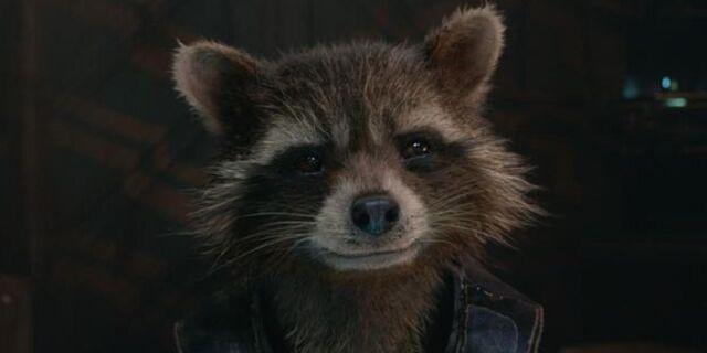 File:Rocket Raccoon.image.jpeg