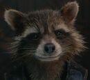 Rocket Raccoon (Earth-???????)