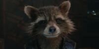 Rocket Raccoon (Earth-???????)